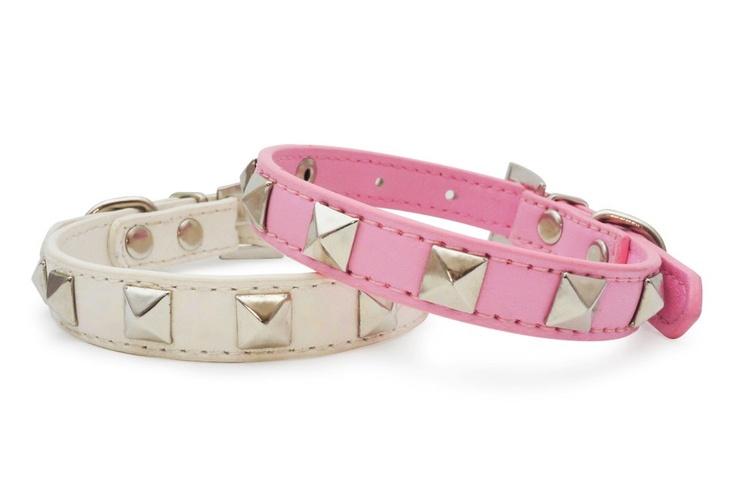 Little Pet Planet - The Rockstar Pet Dog Collar, US$9.99 (http://www.littlepetplanet.com/collars/stylish-collars/the-rockstar-pet-collar/)