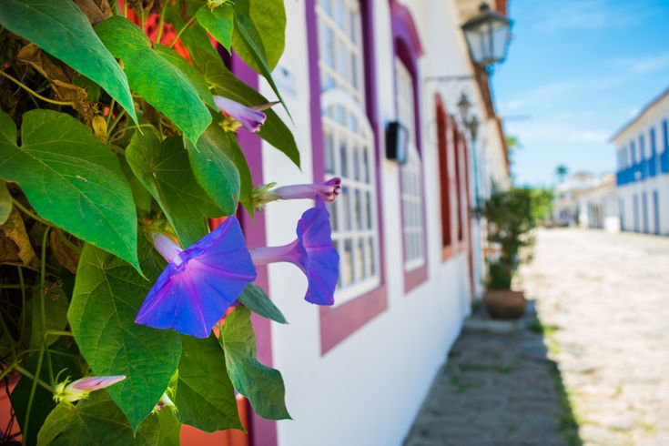 Why you have to visit Paraty, Brazil-- and everything you need to know when you get there!