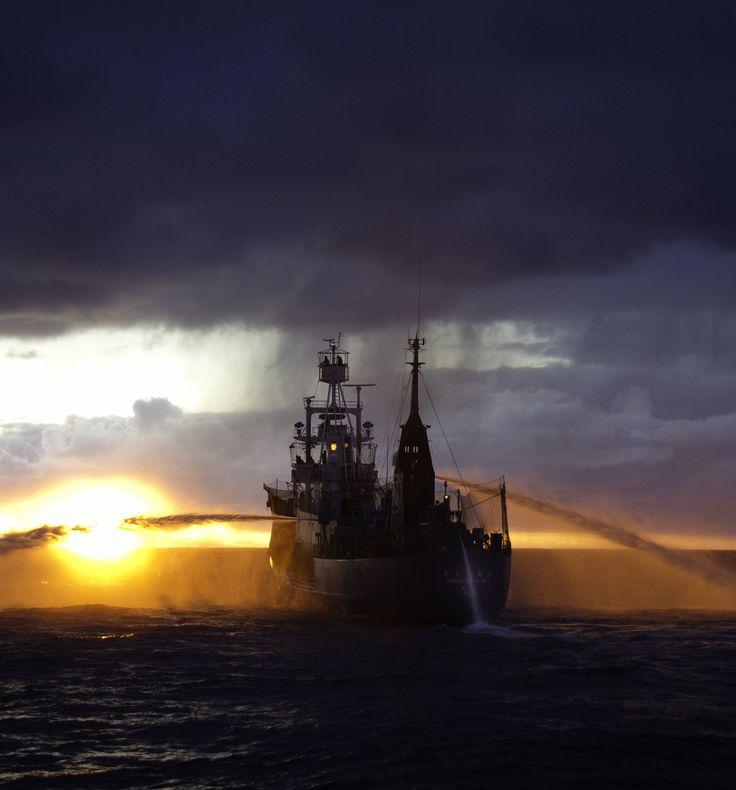 13 Best Lobster Boat Images On Pinterest