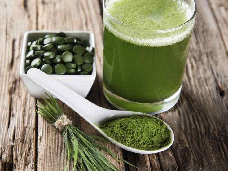 L'algue verte pour éliminer les métaux lourds La plupart de nos produits frais sont recouverts de pesticides, des sous-produits chimiques issus de l'industrie sont régulièrement répandus dans…