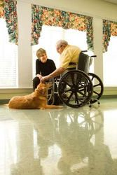 Happy Hug Your Cat Day (June 4th). If your loved one adores a dog, cat, bird, or other pet, find out more about the benefits of assisted living communities that are pet friendly.If you need help locating pet friendly senior housing options a Caring.com Family Advisor can help: (800) 325-8591