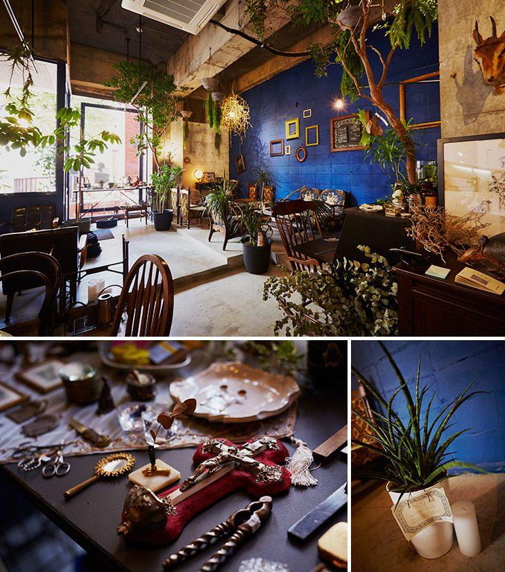 1秒で疑似トリップできる異国カフェ ≪今週のカフェ&スイーツ*1話 『Botanical item & Café CYAN』≫ | 仙臺いろは