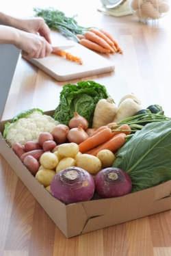Voltijds vegetariër worden is niet nodig! Dit is wat één veggiedag al kan doen: De Morgen. Each day you eat veggie you contribute to a better world: an overview
