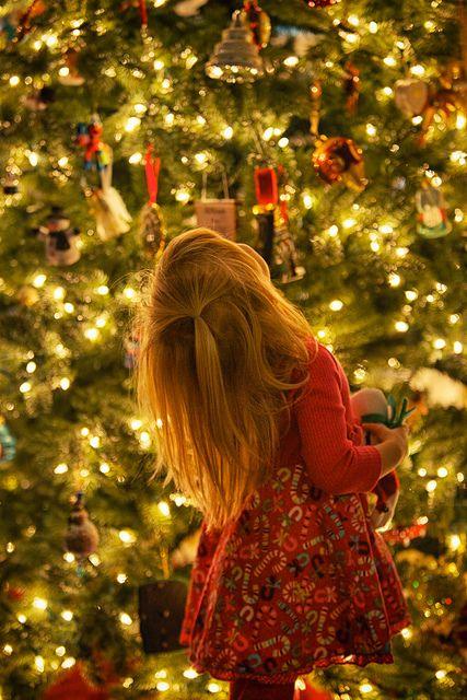 1208 best Christmas Scenes : ))