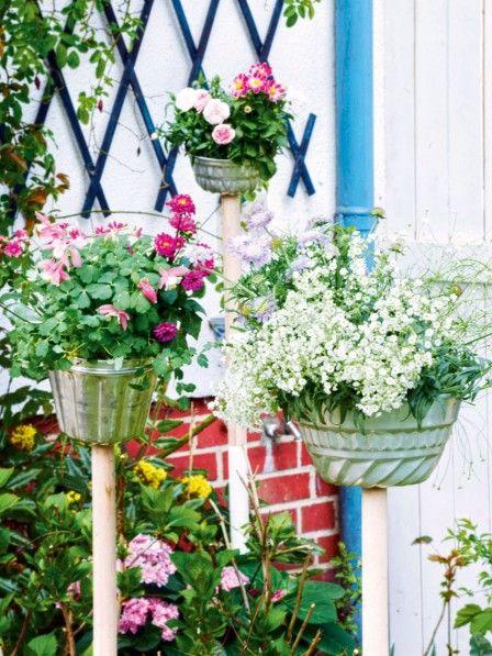 die 623 besten bilder zu zimmerpflanzen balkon terrasse auf pinterest deko aloe vera und. Black Bedroom Furniture Sets. Home Design Ideas