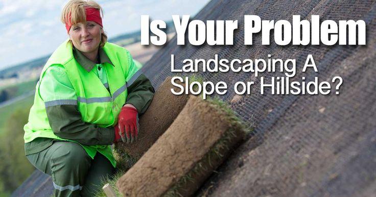 http://plantcaretoday.com/is-your-problem-landscaping-a-slope-or-hillside.html
