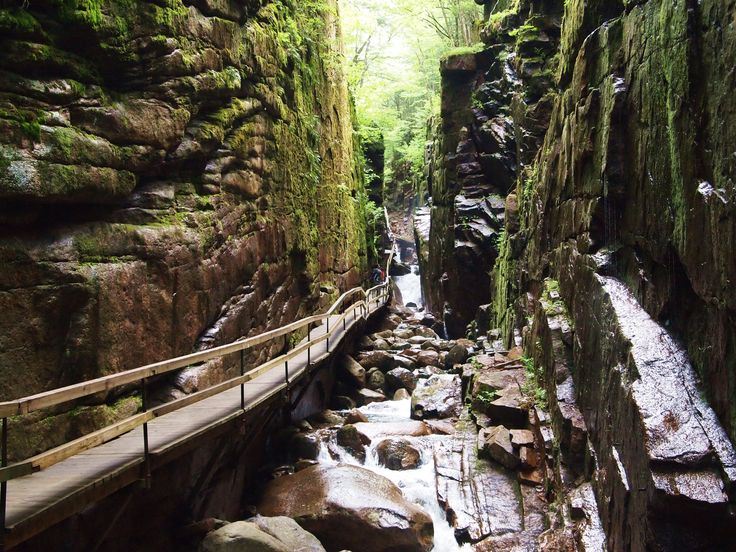 The Flume Gorge in Lincoln, NH is a must-see for anyone visiting Franconia Notch. Here's what to expect when you venture into this White Mountains favorite.