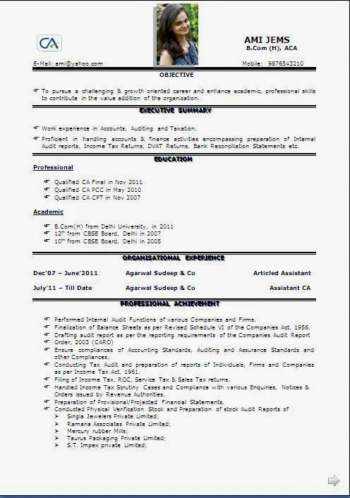 cv headings sample template of excellent curriculum vitae resume format with career objective job profile - Internal Resume Format