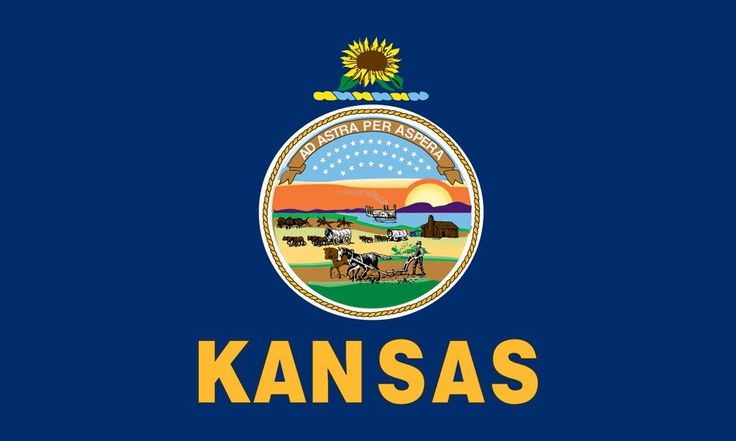 Hawaii state flag for Kansas flag coloring page
