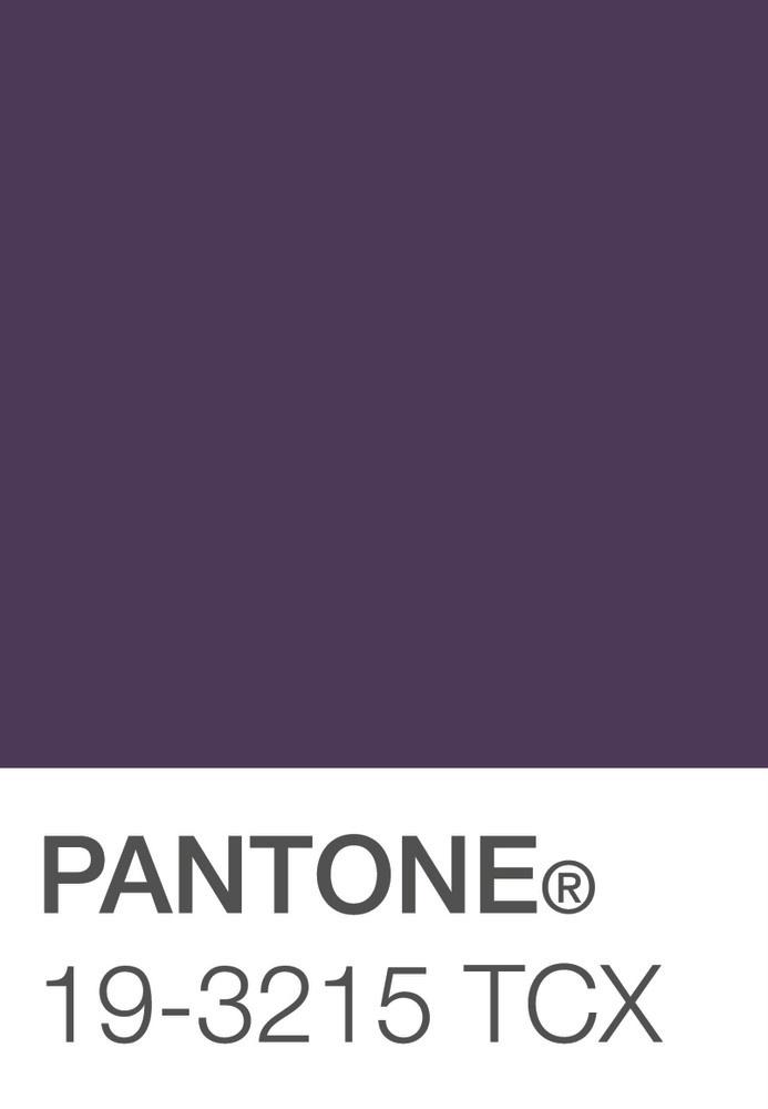 Deep Purple  Pantone 19-3215 TCX