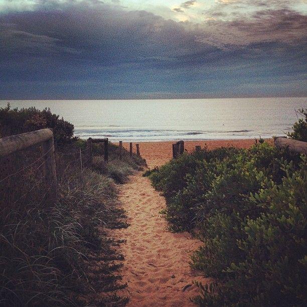 Narrabeen Northern beaches