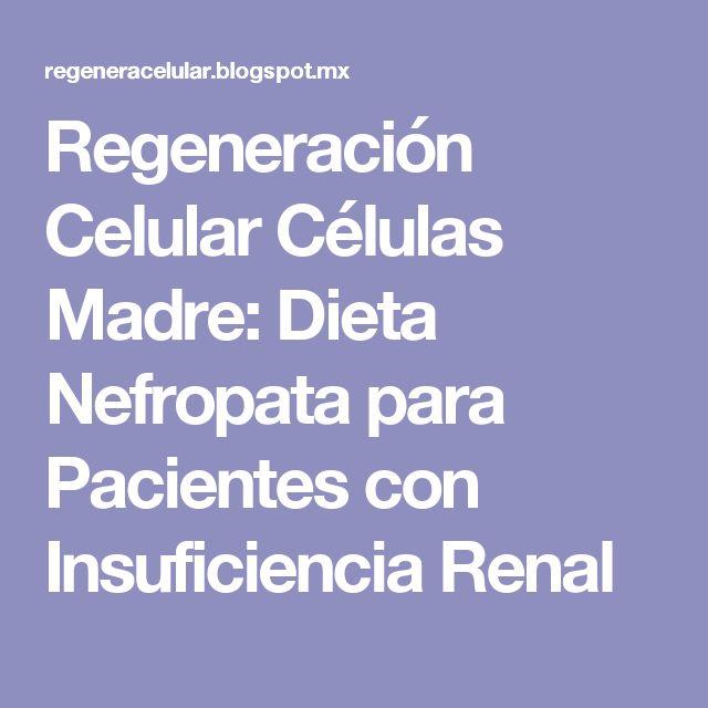 Regeneración Celular Células Madre: Dieta Nefropata para Pacientes con Insuficiencia Renal