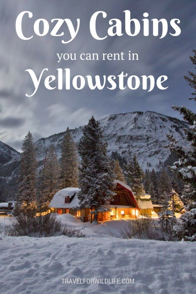 11 Dreamy cabins you should rent in Yellowstone for your next vacation. Travel in North America.