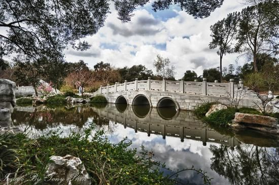 17 best images about huntington library san marino ca on for Koi pool thornton