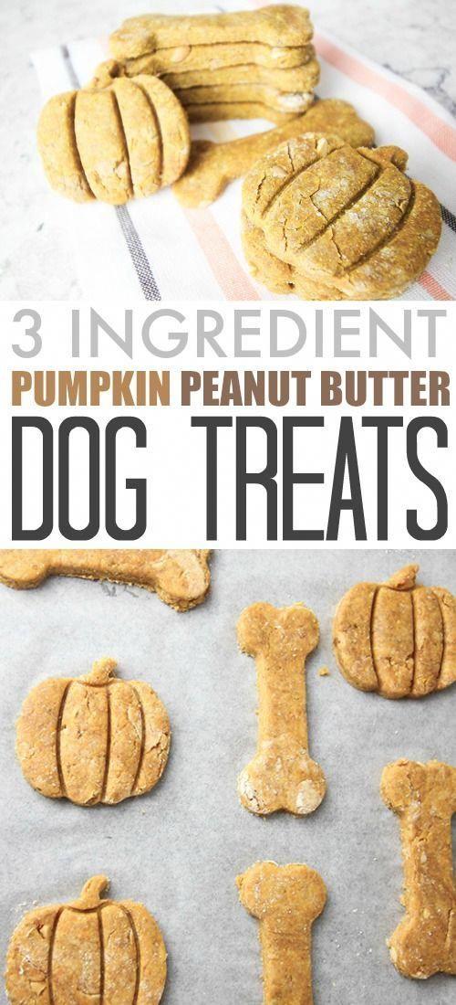 Three Ingredient Diy Pumpkin Peanut Butter Dog Treats