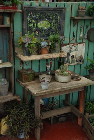 ガーデニング&クッキング本の画像 | サブリナ~花と写真のある暮らし~