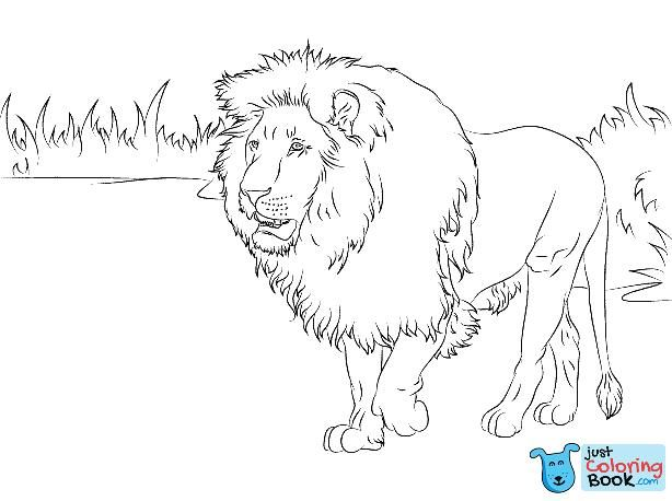 Lions Coloring Pages Free Coloring Pages With Cave Lion Coloring Pages Free Download Download More Free Printable Hd Images For Lion Coloring Pages By Visiti