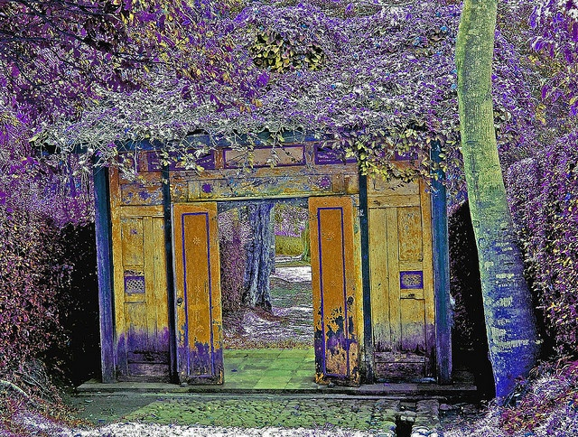 Losari plantation, Central Java                                                        need to stand in this door way