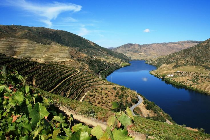 Douro-Valley-Portugal.jpg (900×600)