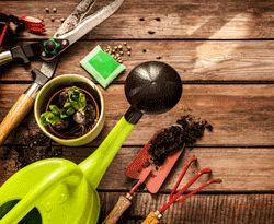 Como Planear o Seu Jardim