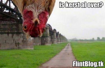 Flint-blog: december 2010