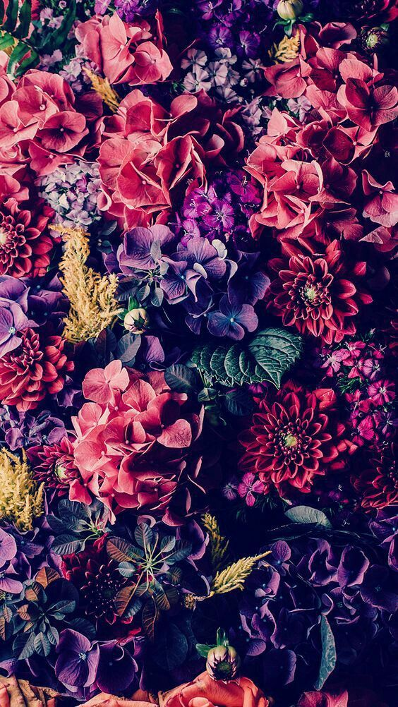 That reddish-pink flower near the right side of the pic looks like a mandala