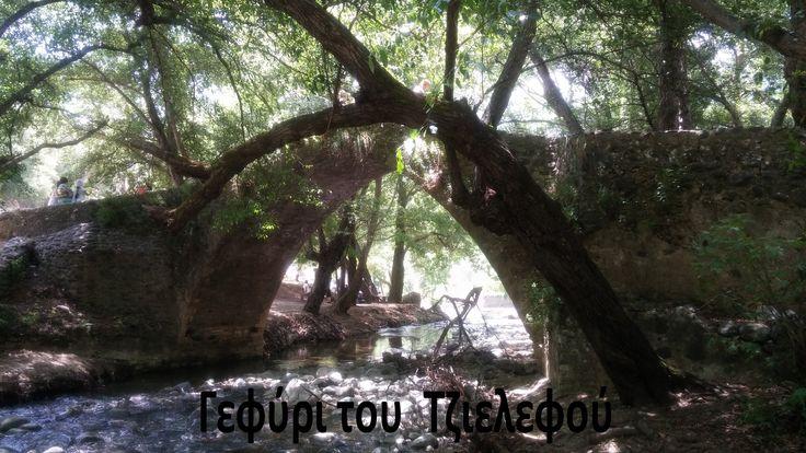 Φύση- Γεφύρι του Τζιελεφού