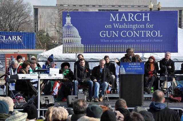 essay on gun control 2013