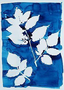 """Obraz na płótnie """"Blue Plant in Negative"""""""