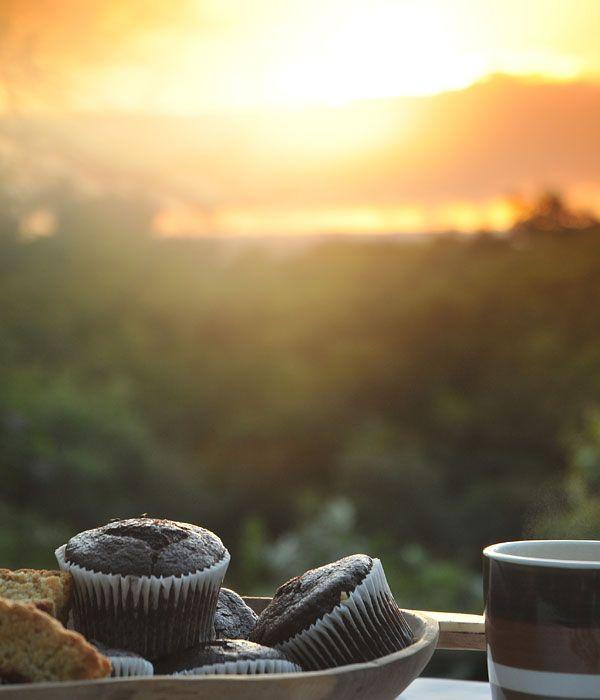 Early mornings at Falaza Game Park and Spa - 4 Star