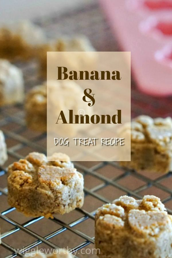 Banana Almond Dog Treat Recipe Dog Biscuit Recipes Dog Cookie