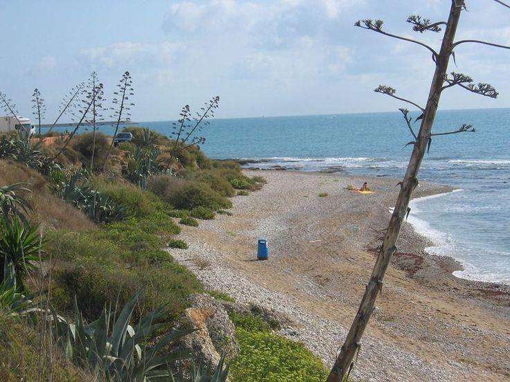 Bon dia / Buenos días desde la Playa de Aiguadoliva en Vinaròs #CastellonMediterraneo 1ª playa en la que está autorizado el baño de los perros de toda la Comunitat Valenciana. Una buena noticia para los amantes de los animales. La playa se sitúa en el extremo sur del término municipal de Vinaròs, en la desembocadura del barranco Aiguadoliva y limita con Benicarló.