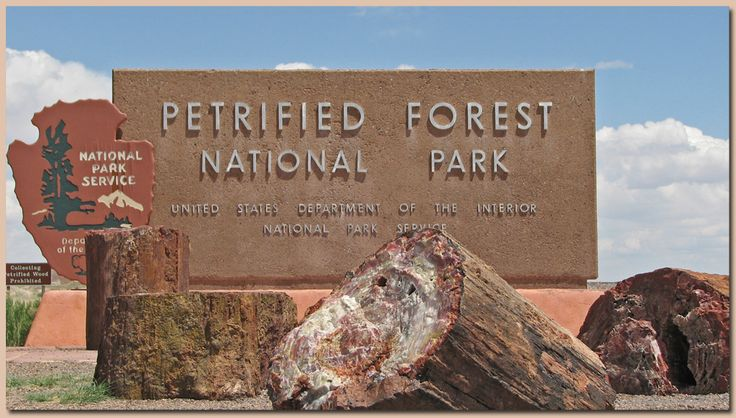 Petrified Forest Painted Desert National Monument