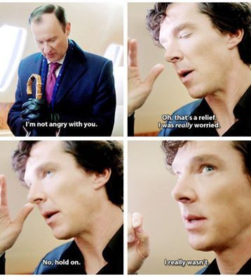 I laughed....but I did feel sorry for Mycroft. I hate when Sherlock makes me feel that way.