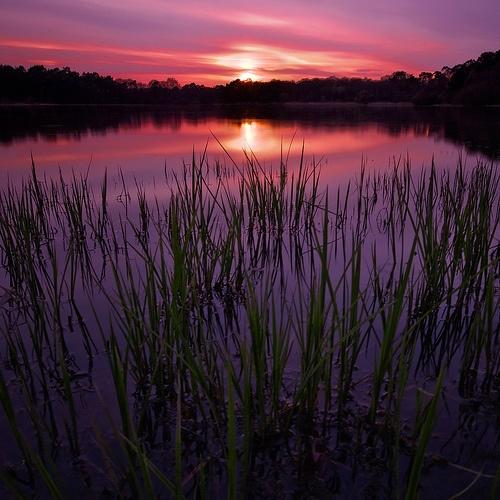 ✯ Passion Twilight ✯: Amazing Sunsetssunri, Natural Beautiful, Sunri Sunsets Sky Univ, Sunri Sunsets Natural, Beautiful Places, Lakes Bolderm, Beautiful Sunsets, Beautiful Pictures, Sunrises Sunsets