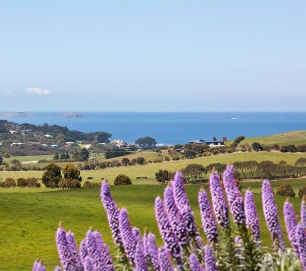 Flinders is a little seaside town on the Mornington Peninsula, Australia