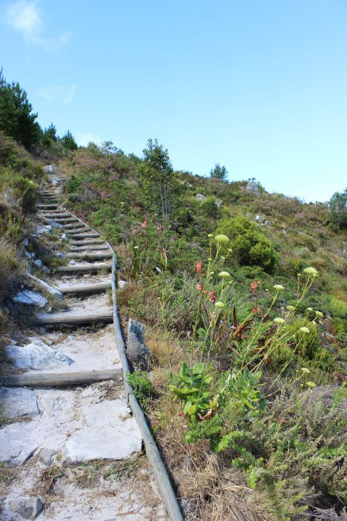 Hiking above Constantia Nek, Cape Town  An unplanned hike in Cape Town's mountains via The World on my Necklace