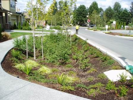 95 best Rain Gardens and Stormwater images on Pinterest Rain