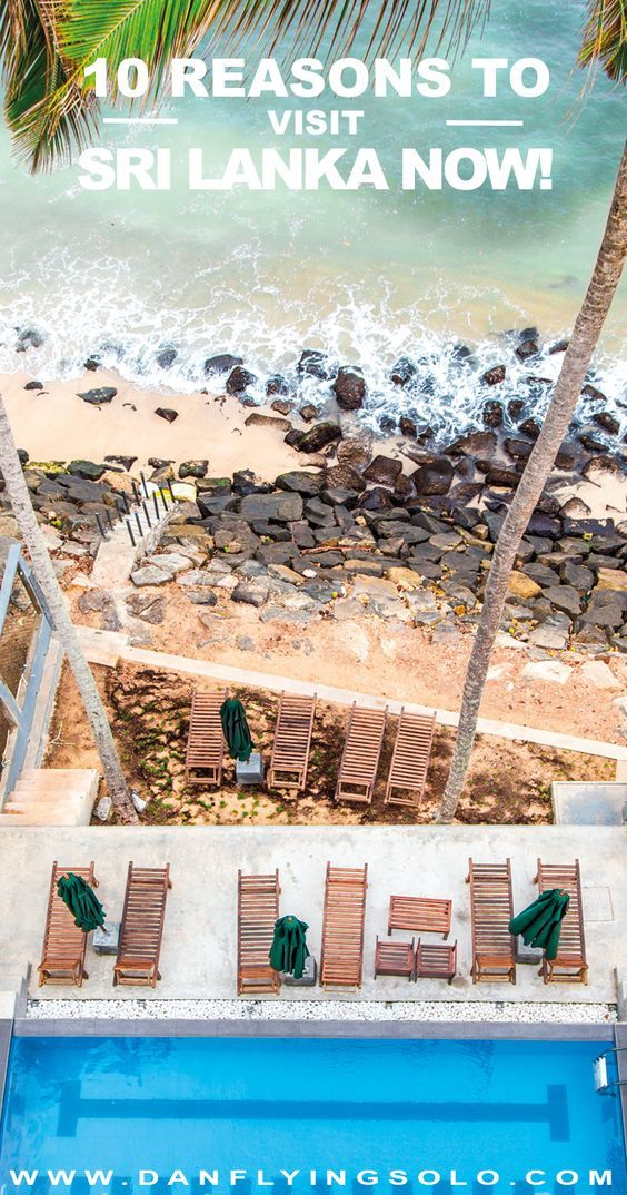 Check out the ten best reasons to visit Sri Lanka NOW before everyone else does. Private beaches, lush tea plantations and Elephant safaris await...