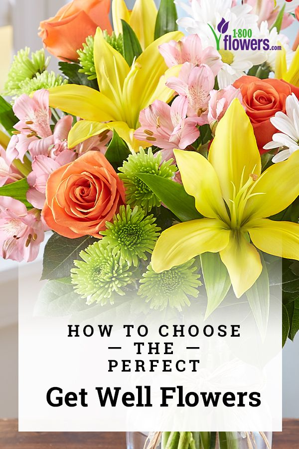 How To Choose The Perfect Get Well Flowers Petal Talk Get Well Flowers Get Well Soon Flowers Flowers