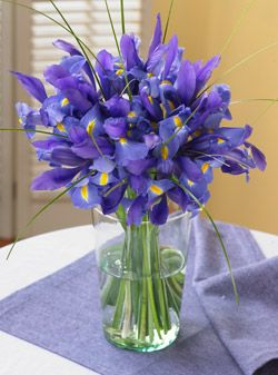 Iris is a spring flower but is available most of the year along with many different types and colors.