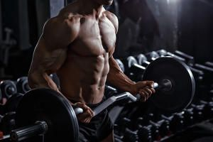 Der perfekte 8-Wochenplan zum Muskelaufbau