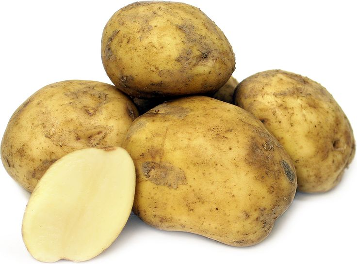 Kennebec Potatoes Information and Facts