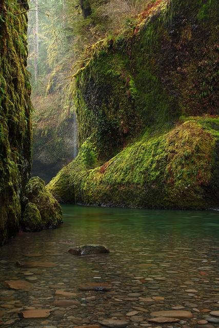 Eagle Creek Canyon By Punch Bowl Falls
