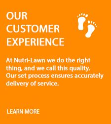 Nutri-Lawn - Our Customer Experience