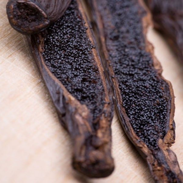 La vanille est une épice constituée par le fruit de certaines orchidées lianescentes tropicales d'origine mésoaméricaine du genre Vanilla, principalement de l'espèce Vanilla planifolia.  Elle est utilisée dans la préparation de desserts sucrés, plats salés, cocktails mais aussi dans l'industrie cosmétique.  #Vanille #Vanille_Bourbon #Vanille_Bio #Vanilla #Vanilla_Beans #Vanilla_Pods #Bourbon_Vanilla #Organic_Vanilla #Vanille_Gousses