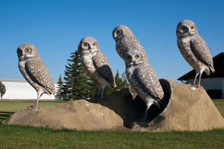 Burrowing Owls Wildlife Sculpture
