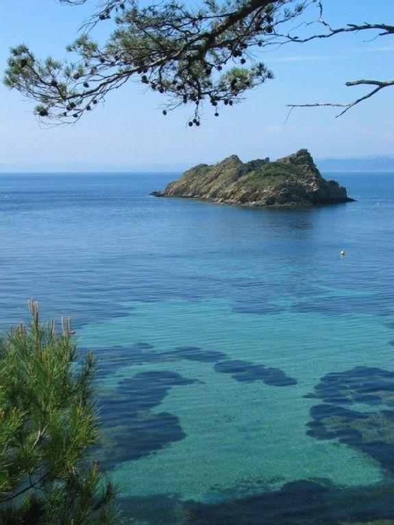 Port Cros:Ilot de La Gabinière. ( M.D )