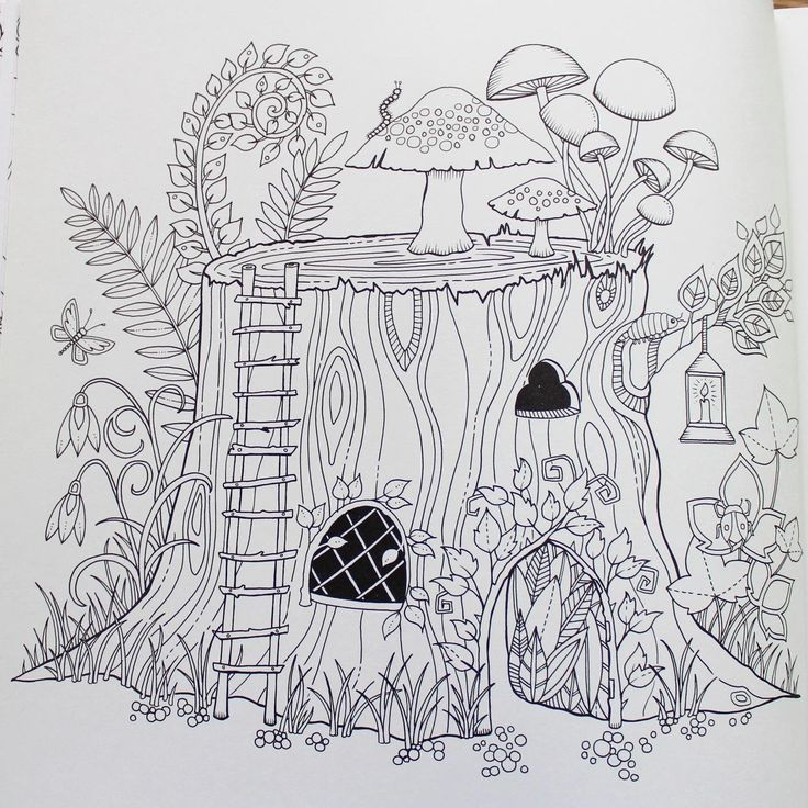 Enchanted Forest An Inky Quest Amp Coloring Book Johanna Basford 9781780674889 Amazon