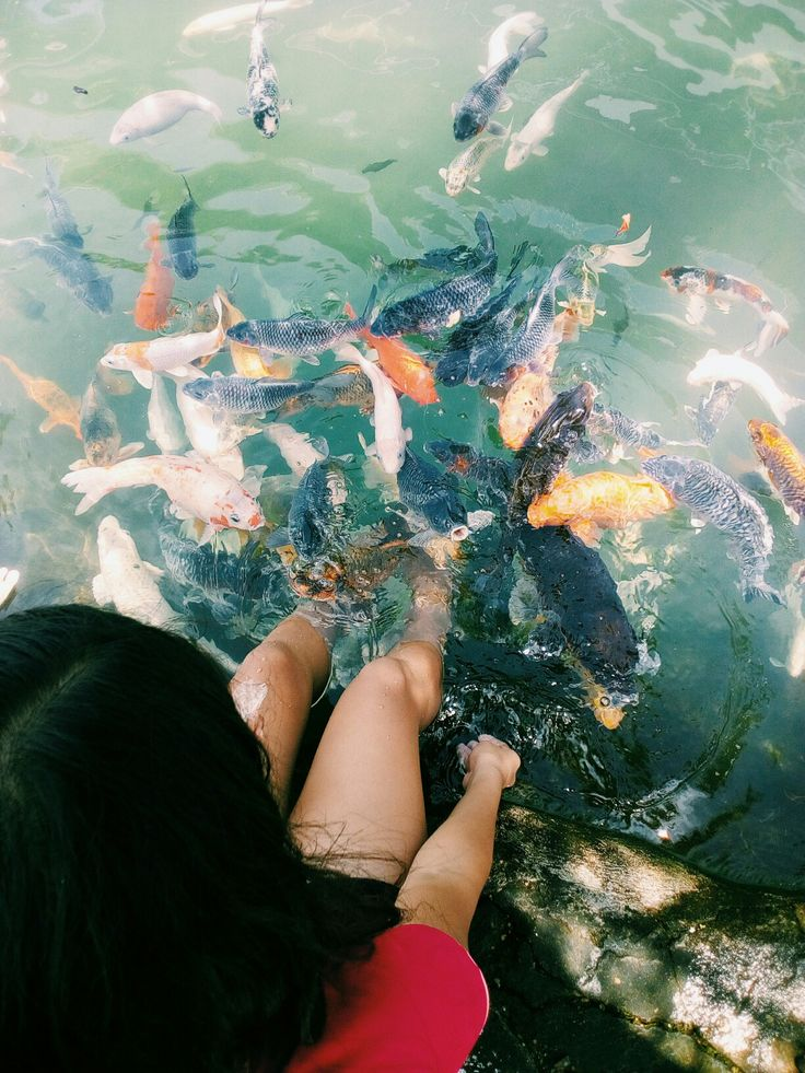 La Verna Resort, Dumaguete Valencia, Philippines 🐠🐠🐠